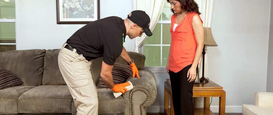 Ithaca, NY carpet upholstery cleaning
